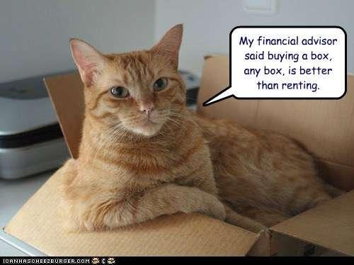 kitten neutering age